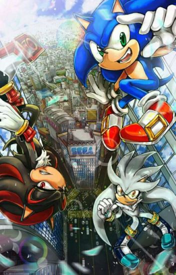 Who To Like~? [Sonic X Reader X Shadow X Silver]