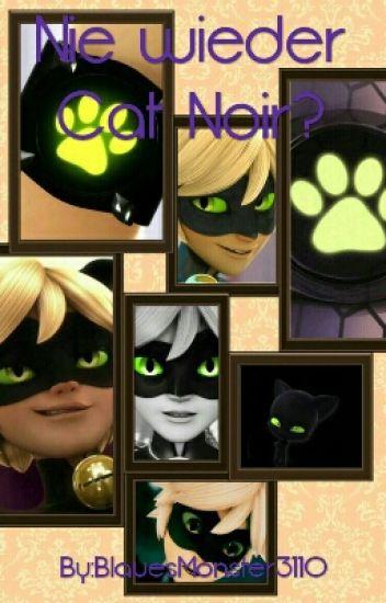 Nie wieder Cat Noir? [Adrinett | ✔]