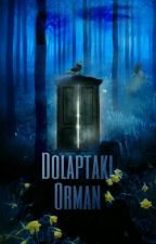 Dolaptaki Orman by OrigamikAdam