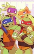 TMNT Would You Rather? by HamatoLeafCatz