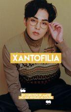 [x]antofilia ↭ Chenmin by ysxnha