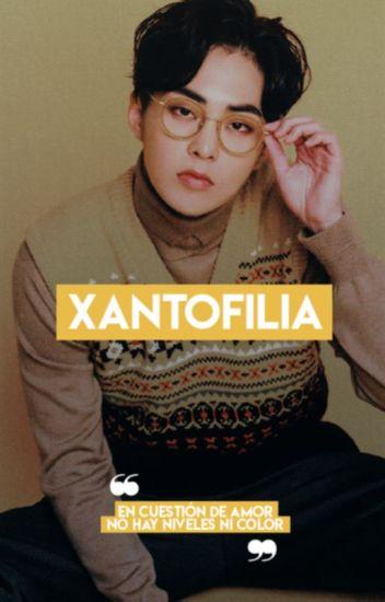 『 [x]antofilia 』