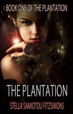 The Plantation by StellaSFitzsimons
