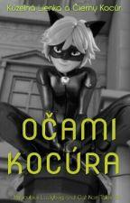 Kúzelná Lienka a Čierny Kocúr: Očami Kocúra by Yookie_jpg