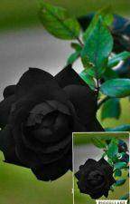 Black Rose (Hikaru X Reader) by AyameSuzume