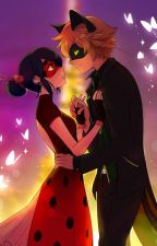 Watching Miraculous Ladybug Through A Screen by KawaiiKitty2610
