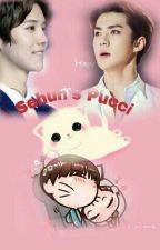 Black Magic (Sehun's Pucci) HunHan by luhanniesandy