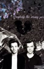 ✖ Breaking The Wrong Person- Larry Stylinson AU PL by LarrehSForever