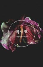 Zodiac Book | Exo by Huyanyan