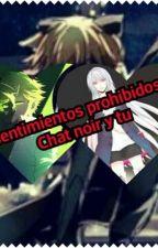 Sentimientos Prohibidos (Chat Noir Y Tu) COMPLETA by Marifer1833