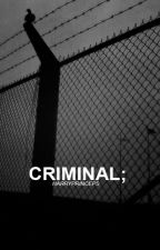 criminal - ls by harryprinceps