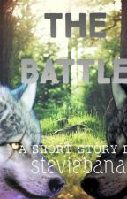 The Battle by steviebana