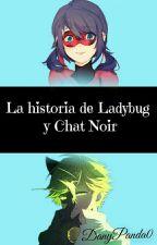 La Historia De Ladybug Y Chat Noir (según Emma Agreste) by DanyPanda0