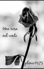 Una rosa nel vento...( Larry Stylinson ) by plinio1975