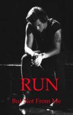 Run (Harry Styles) -editing by t_dog4