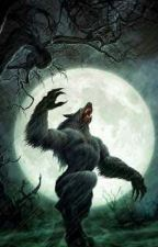 A Werewolf Girls by Liliskarate123