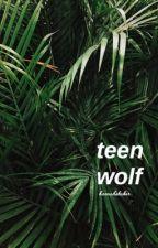 teen wolf ➥ gender swap by maggiesrhee
