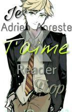 Je t'aime trop  (Adrien Agreste/ Chat Noir X Reader) by JarelGomez13