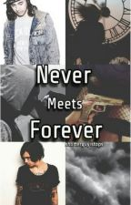 Never Meets Forever [BoyXBoy] by shorterguyistops