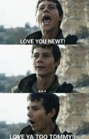 Newtmas Pictures & Memes