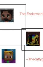 The Enderment {On hold until I get more reads} by Thecattydddy