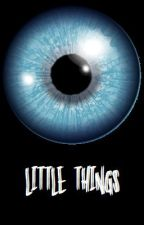 Little Things by MiloshPetrik