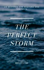 The Perfect Storm by wheezayne