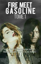 Fire meet Gasoline ∯ Tome I by LauraGlt2