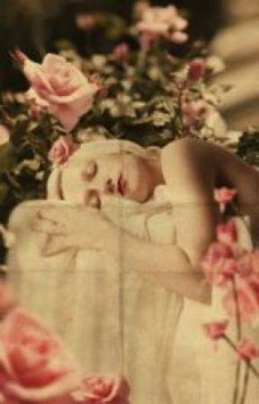 Not Beauty's Sleep by ChristineLocke