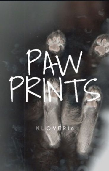Paw Prints - Setiplier