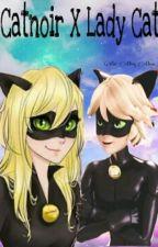 Catnoir x Lady Cat(adrien Y Tu) by Ana614
