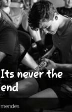 Shawn Mendes- Its Never The End by Readinessurge