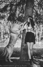 An alpha, really an alpha? by MeganAllis