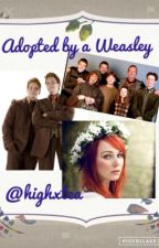 Addopted By A Weasly #1 by highxtea