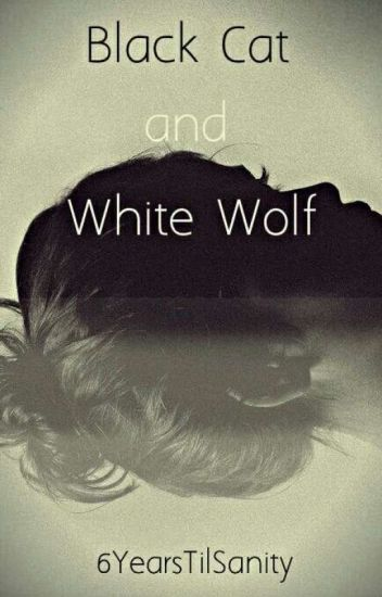 Black Cat and White Wolf (a chat noir x reader fanfic)