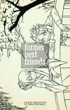 Former Best Friends | NaLu by lolerjr-