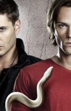 Beyond the Supernatural ( Winchesters' Fanfic!)  by ViperRemington360