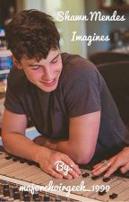 Shawn Mendes Imagines by majorchoirgeek_1999