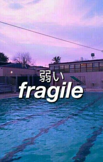 fragile ➳ reigisa