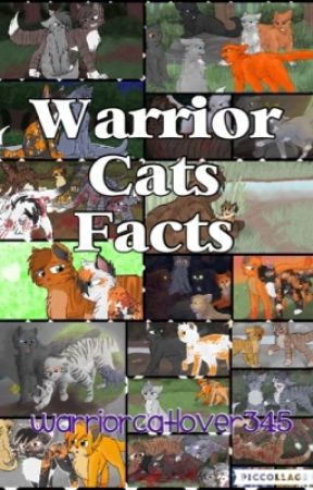 Warrior Cats Facts by warriorcatlover345