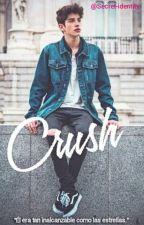 CRUSH. by Secret-identity