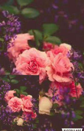 Black Rose 2 (Hikaru X Reader)  by AyameSuzume
