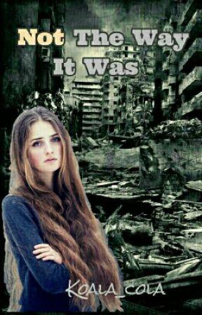 Not The Way It Was (Halisa's POV) by koala_cola