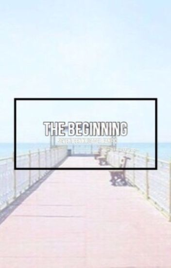The beginning | Seventeen x reader fan fiction