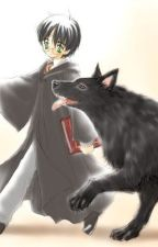 Escapando de Azkaban by Sakata_Gintoki-sama