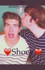 shoey by shoeypewdiecry