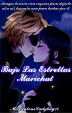 Bajo Las Estrellas (Marichat) One-Shot by MiraculousLadybug24