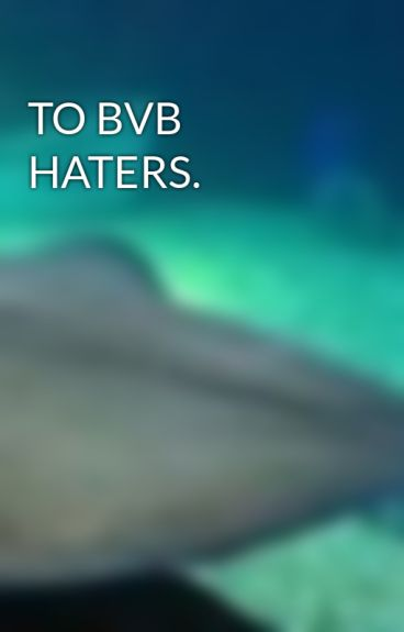TO BVB HATERS. by FOBLover