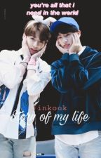 Story of my life ( BTS Jinkook) >ON HOLD< by tinkerwinkingie