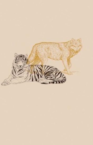 •Tiger•